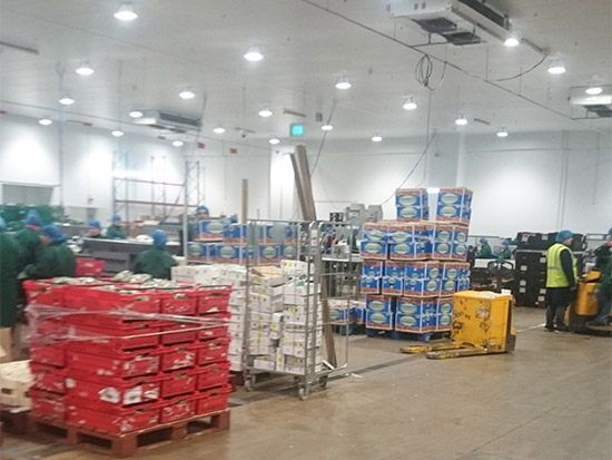 Food Packing Plant LED Lighting Case Study - Zone 4 - After