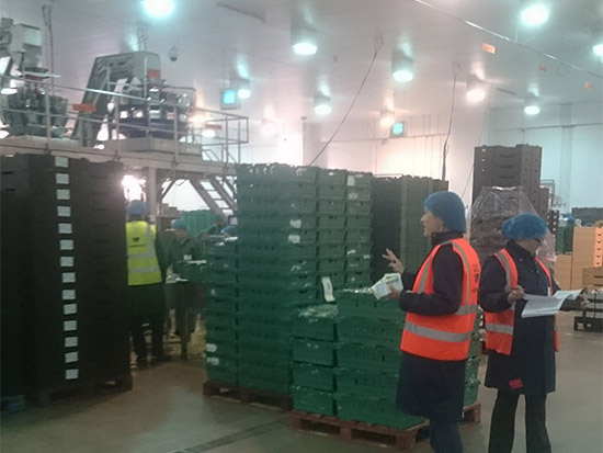 Food Packing Plant LED Lighting Case Study - Zone 4 - Before